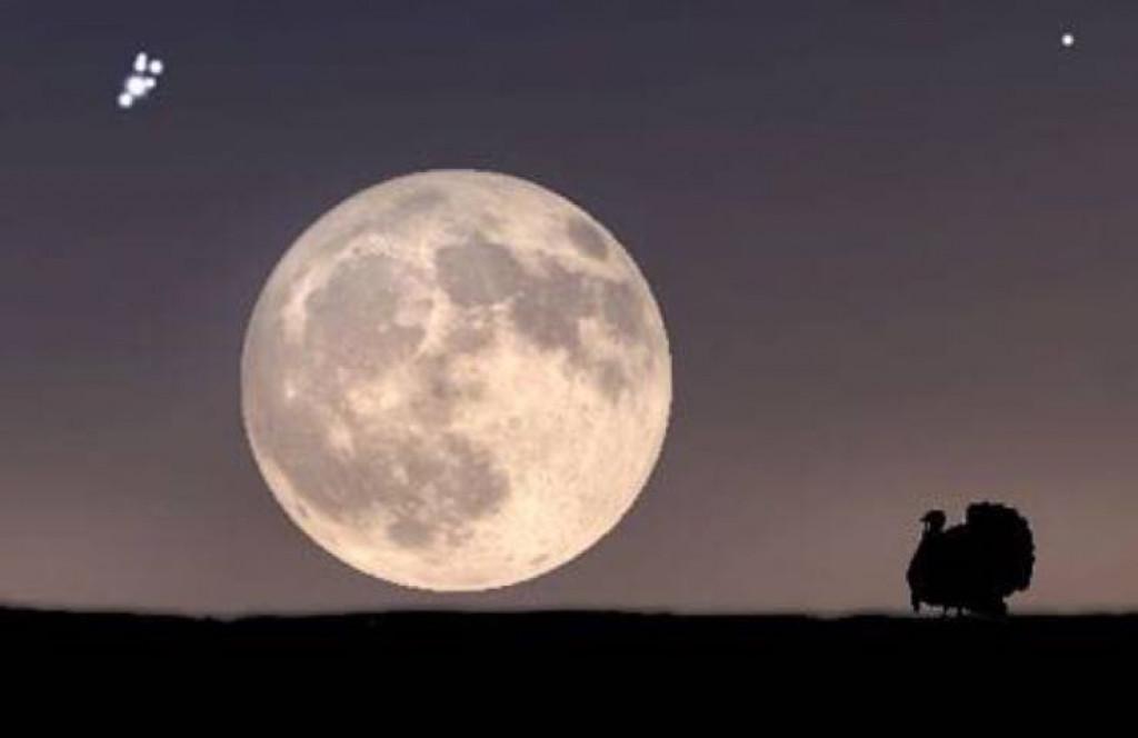 محاولة الصعود للقمر ليلة أخرى