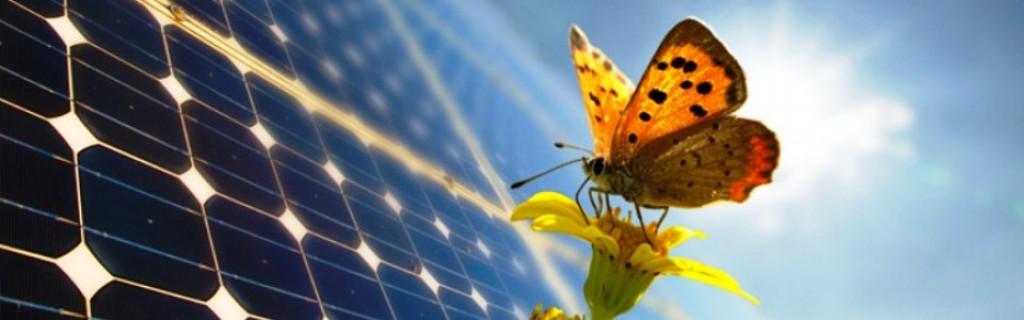 أنجزت موقعا لشركة تركيب ألواح الطاقة الشمسية و توربينات الرياح