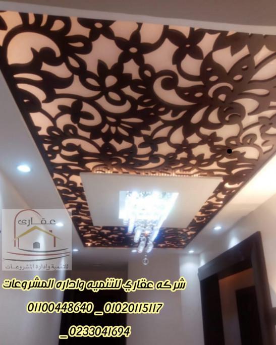 شركة تشطيب  _ شركة ديكور ( شركة عقارى 01100448640 _ 01020115117 )