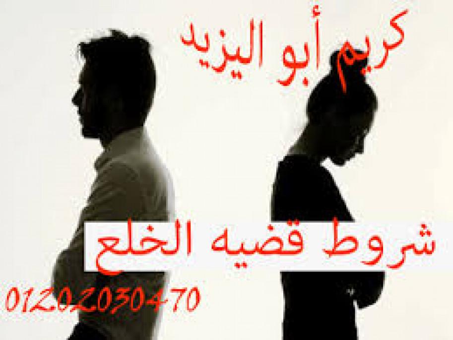 محامي متخصص في قضايا الخلع (كريم ابو اليزيد)01202030470
