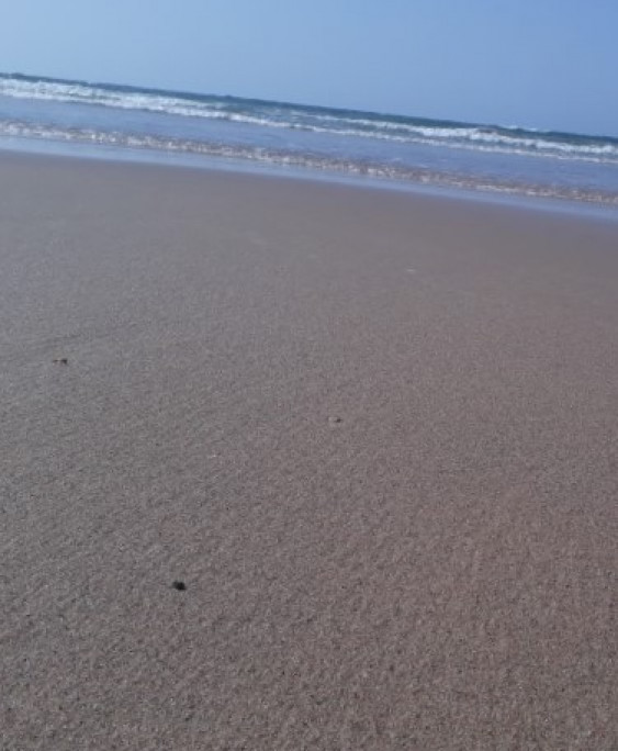 البحر3 - في البحر:person_swimming: