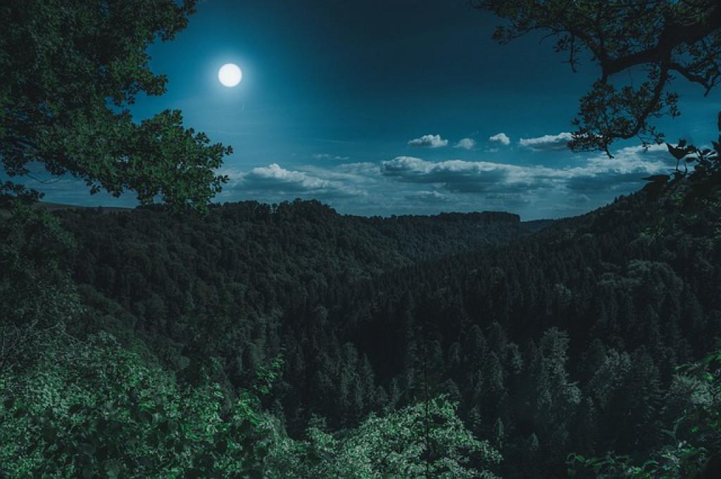 ما اسم قمرُ القمرِ بالإنجليزية؟
