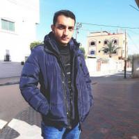محمد أنيس